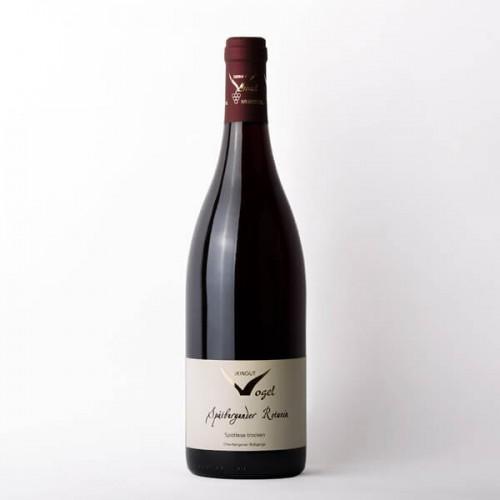 Weingut Vogel Spätburgunder Rotwein 2019 BESONDERES Spätlese trocken